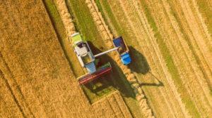 Farmers Plowing Field in San Jose